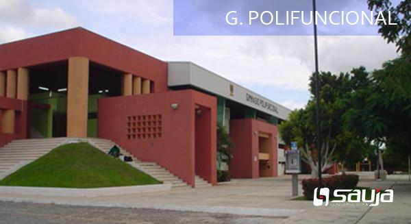 G. POLIFUNCIONAL
